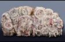 2 Étoupe de coton
