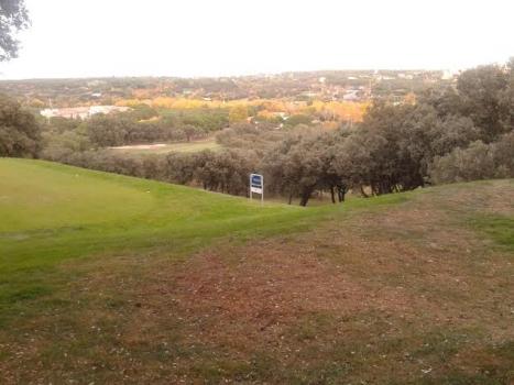 Golf y Vida