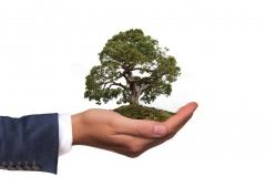 Seguro de responsabilidad medioambiental