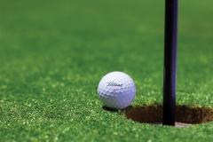 Seguro golf