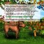 Pistacho, el perro verde