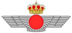 Spanish Air Force (armament department)