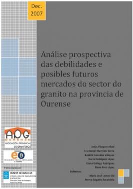 Estudio de Mercado 2007