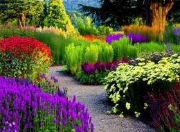 Libros sobre flora