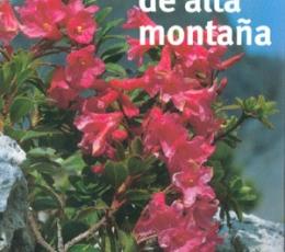 Flores de alta montaña