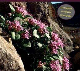 Flores del Prepirineo y Tierras Vecinas
