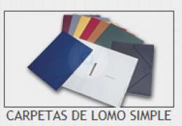 CARPETA LOMO SIMPLE VACIA G-3 GRIS
