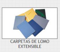 CARPETA LOMO EXTENSIBLE G-3 GRIS