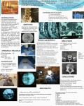 TECNICA PERCUTANEA PARA HERNIA DISCAL - USO DE ETANOL GELIFICADO (DISCOGEL) - EXPERIENCIA PRELIMINAR