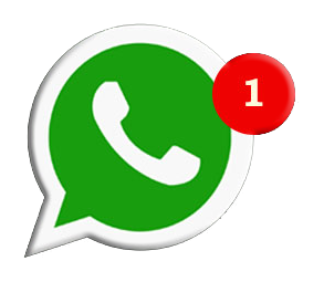 Whatsapp neumáticos y macizos