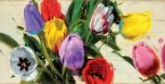 Spring nº13