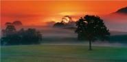Foggy landscape at sunrise