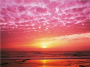 Pink Sunset over Heceta Beach, Oregon