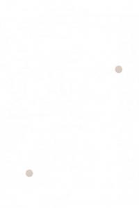 Plumeti 853 C-173