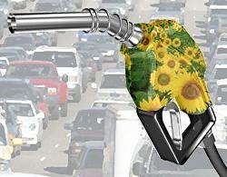 Las petroleras contestan a APPA: los objetivos de biocarburantes que proponen son imposibles de alcanzar