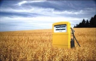 Más de la mitad de los europeos están a favor de los Biocombustibles