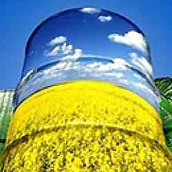 Industria propone alcanzar un 5,9% de biocombustibles en 2011 y un 6,1% en 2013
