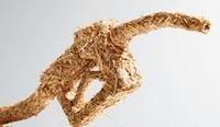 Será posible un nuevo impulso a los biocarburantes como opción y obligación
