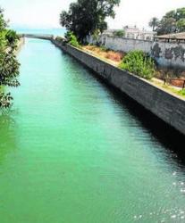 Ecologistas alertan de un vertido de aceite vegetal en el arroyo de Los Gallegos, en San Roque