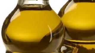 Tesis doctoral sobre biodiesel a partir de aceites vegetales usados y sin usar