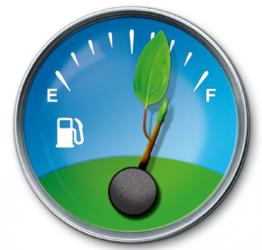 Biodiesel de aceite de palma emite más CO2 que la gasolina