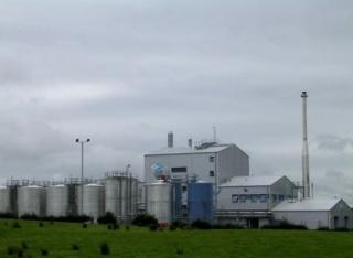 Los naipes del biodiesel siguen su caida