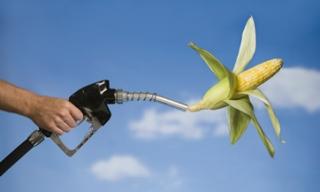 Situación de Biocombustibles en EE.UU.