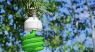 Hacia un mercado de la biomasa sostenible