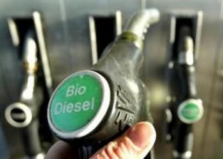 Radiografía de los biocarburantes andaluces