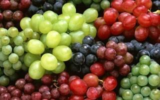 Residuos de uvas para fabricar biocombustibles
