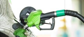 Competencia cree que el uso de biocarburantes en el transporte debe ser progresivo