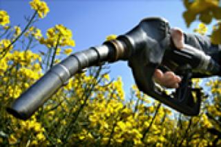 La CE pretende limitar la aportación de los aceites de cocina usados a la nueva obligación de biocarburantes renovables y/o avanzados para 2030.
