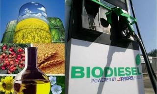 El consumo de biocarburantes aumenta en la Unión Europea