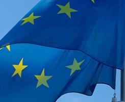 Representación a nivel nacional y europeo