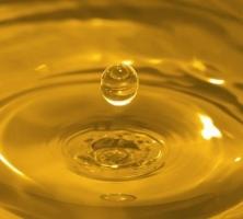 Se pretende potenciar la generación de biodiésel a partir de aceite usado de cocina