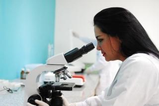 Estudiantes canarios investigan cómo obtener biodiésel a partir de aceites usados.