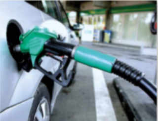Biocarburantes en 2019. Buen presente, pero ¿y el futuro?