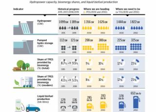 Evolución de la bioenergía y la hidráulica según Irena.