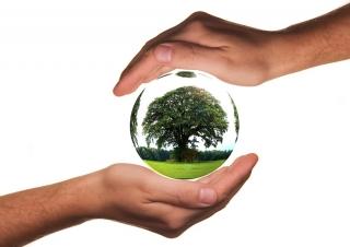 El gobierno vasco convoca ayudas para inversiones destinadas a proteger el medio ambiente