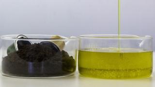 Nuevas cadenas de valor para la utilización de residuos orgánicos urbanos.