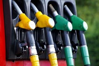 El Gobierno impulsa los biocarburantes en el transporte
