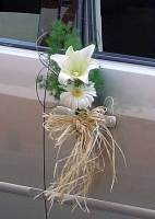 ARRANGEMENT FOR CAR`S DOORS