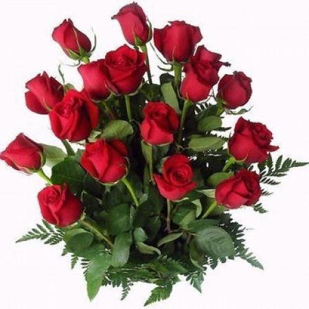 12 grandes rosas rojas exclusivas - Fotos De Rosas Rojas Grandes