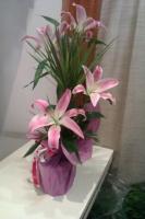 DRACAENA PALM & FLOWERS