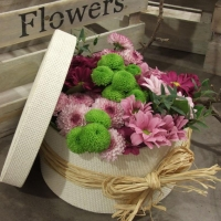 A HAT BOX OF MUMS