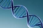 Biologia molecular. PCR