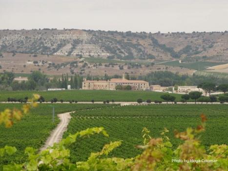 Wein und Gastronomie in La Rioja