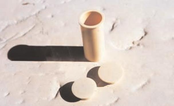 Taco de 50cms para Valla Beethoven D30mm