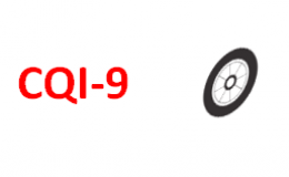CQI9- Check-List