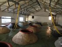 fermentación cemento